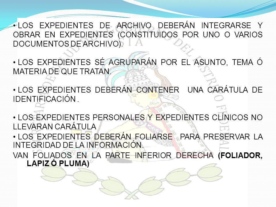 LOS EXPEDIENTES DEBERÁN CONTENER UNA CARÁTULA DE IDENTIFICACIÓN .