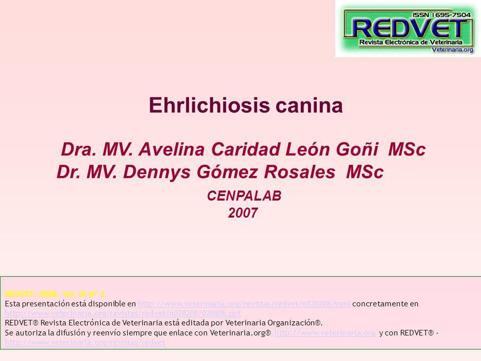 Ehrlichiosis canina Dra. MV. Avelina Caridad León Goñi MSc