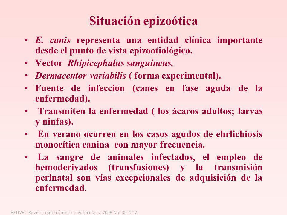 Situación epizoóticaE. canis representa una entidad clínica importante desde el punto de vista epizootiológico.
