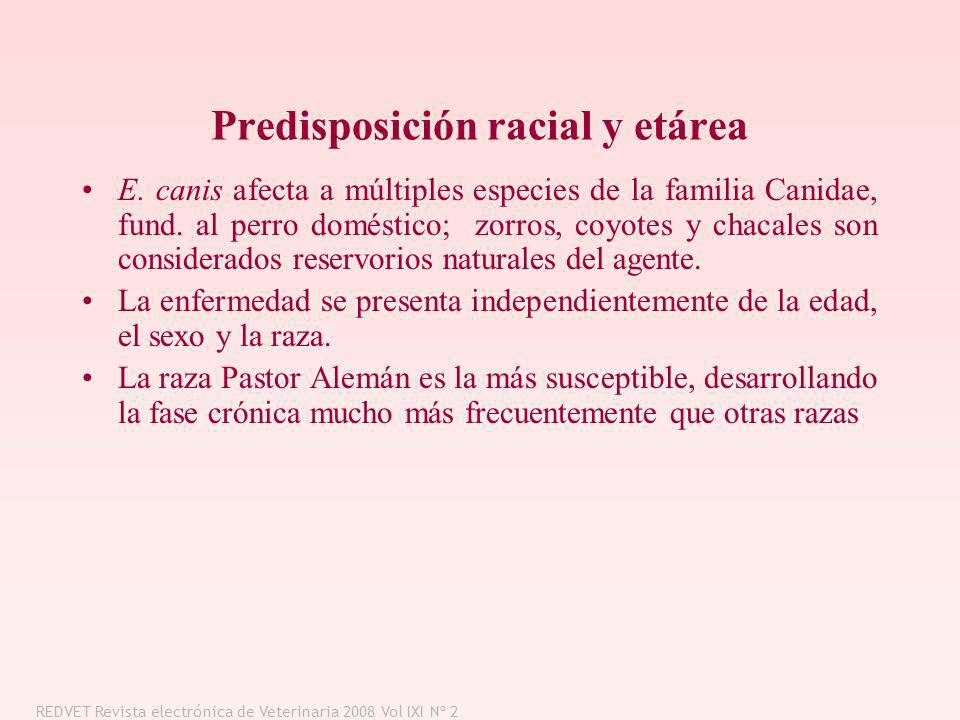 Predisposición racial y etárea
