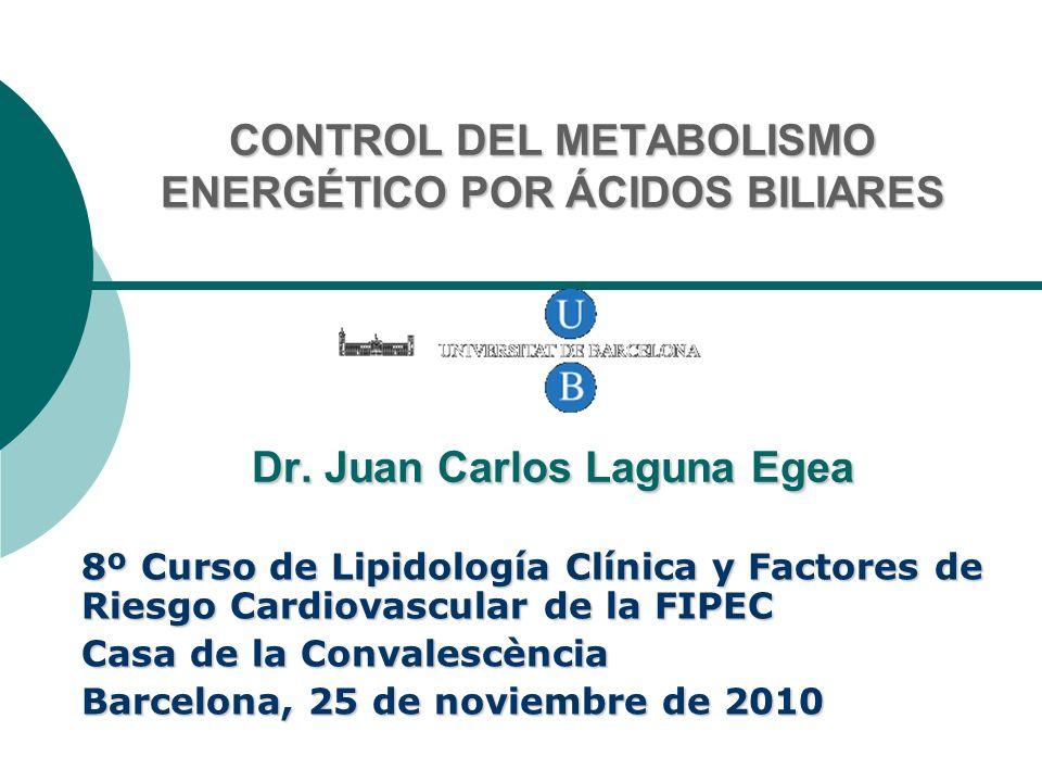 CONTROL DEL METABOLISMO ENERGÉTICO POR ÁCIDOS BILIARES Dr