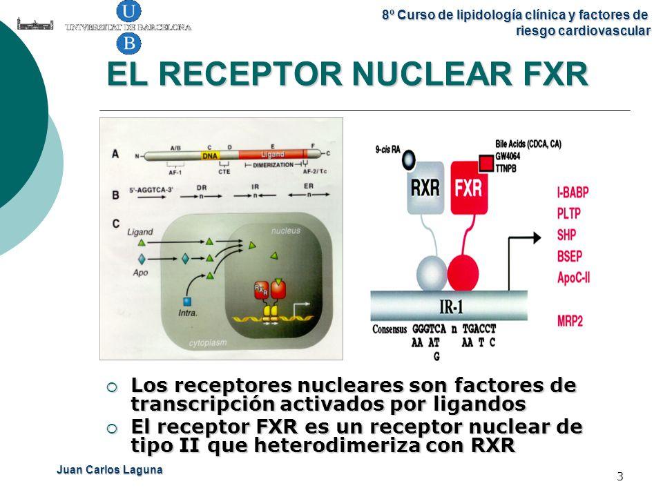 EL RECEPTOR NUCLEAR FXR