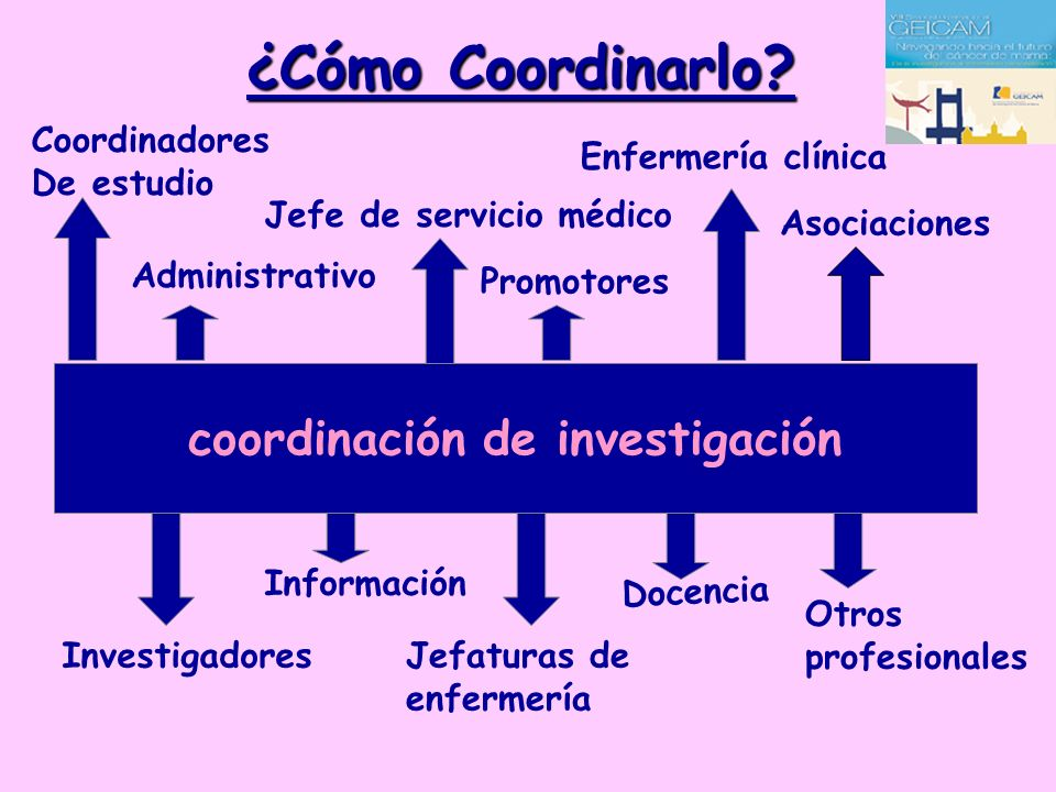 coordinación de investigación