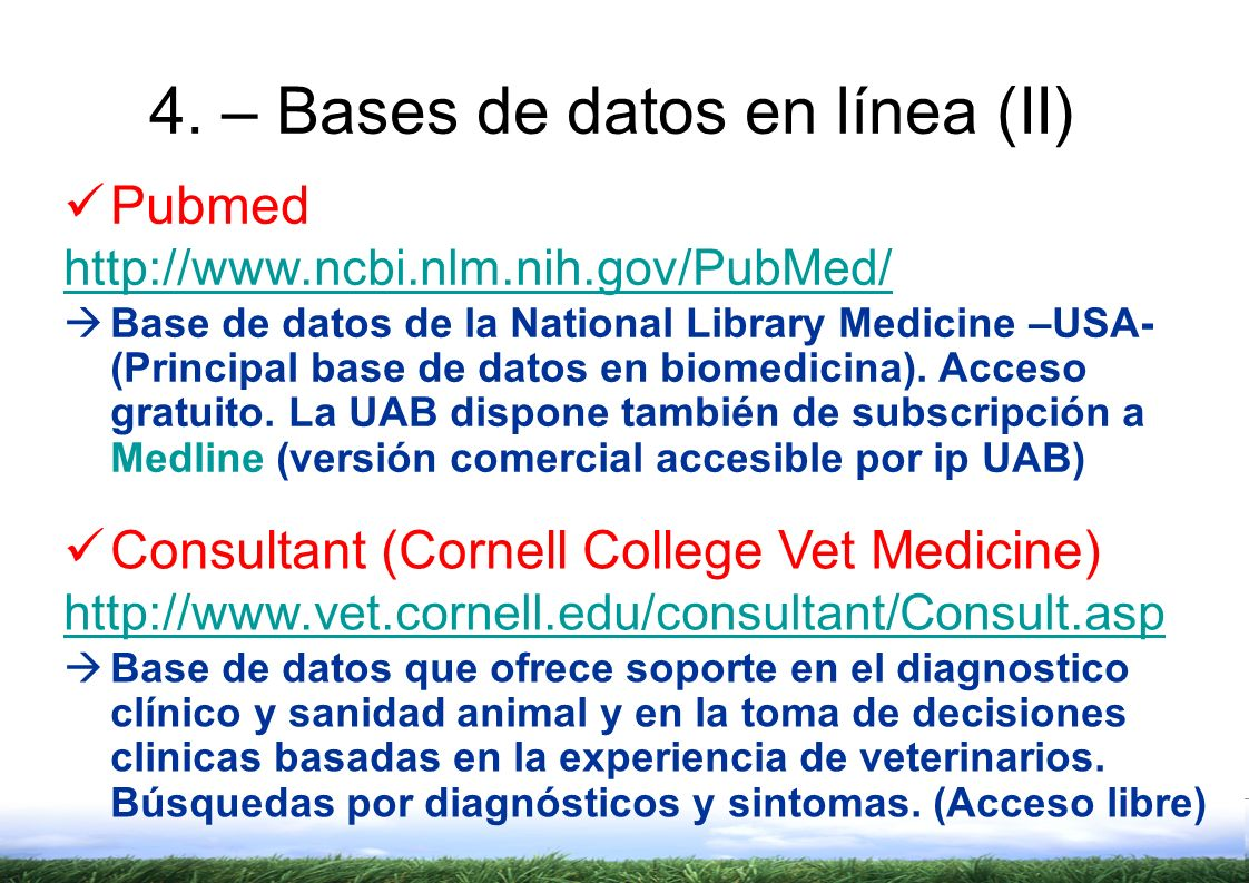 4. – Bases de datos en línea (II)