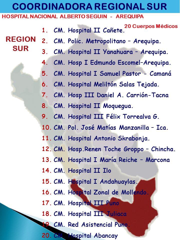 COORDINADORA REGIONAL SUR