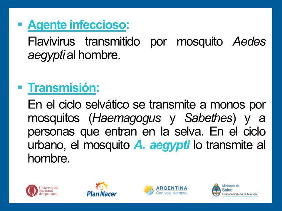 Agente infeccioso: Flavivirus transmitido por mosquito Aedes aegypti al hombre. Transmisión: