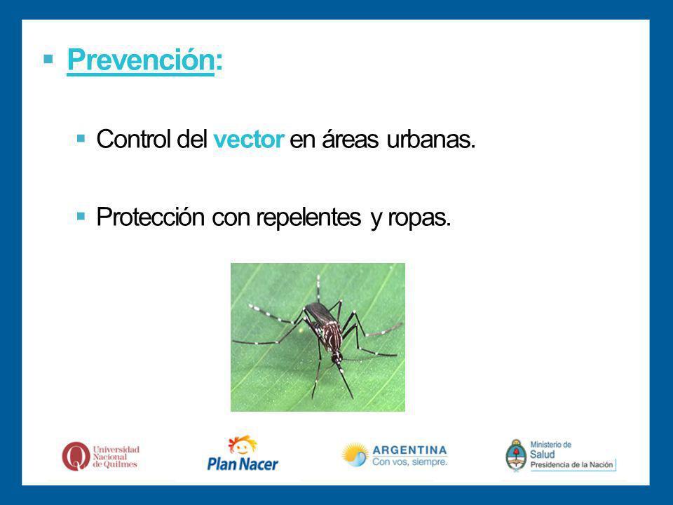 Prevención: Control del vector en áreas urbanas.