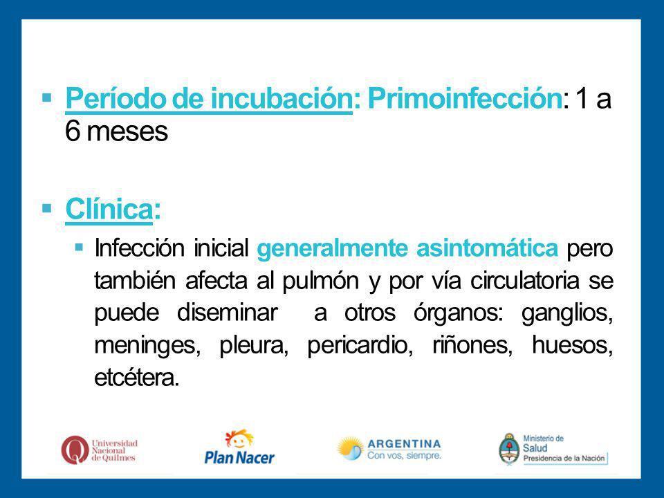 Período de incubación: Primoinfección: 1 a 6 meses