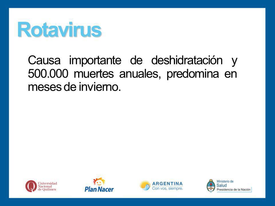 Rotavirus Causa importante de deshidratación y 500.000 muertes anuales, predomina en meses de invierno.
