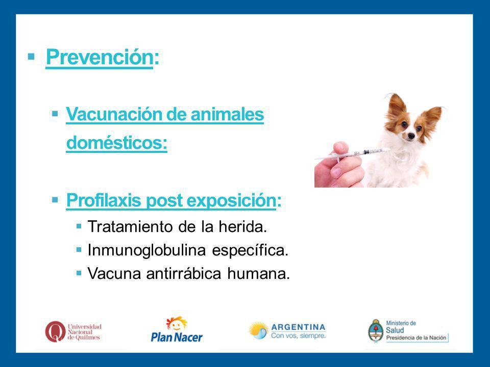 Prevención: Vacunación de animales domésticos: