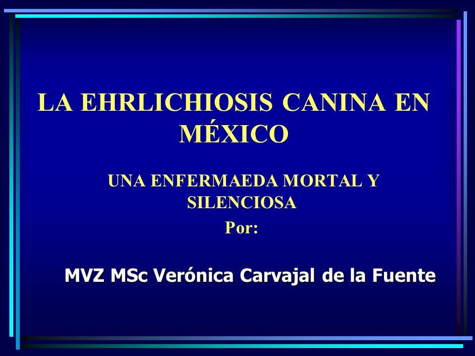 LA EHRLICHIOSIS CANINA EN MÉXICO