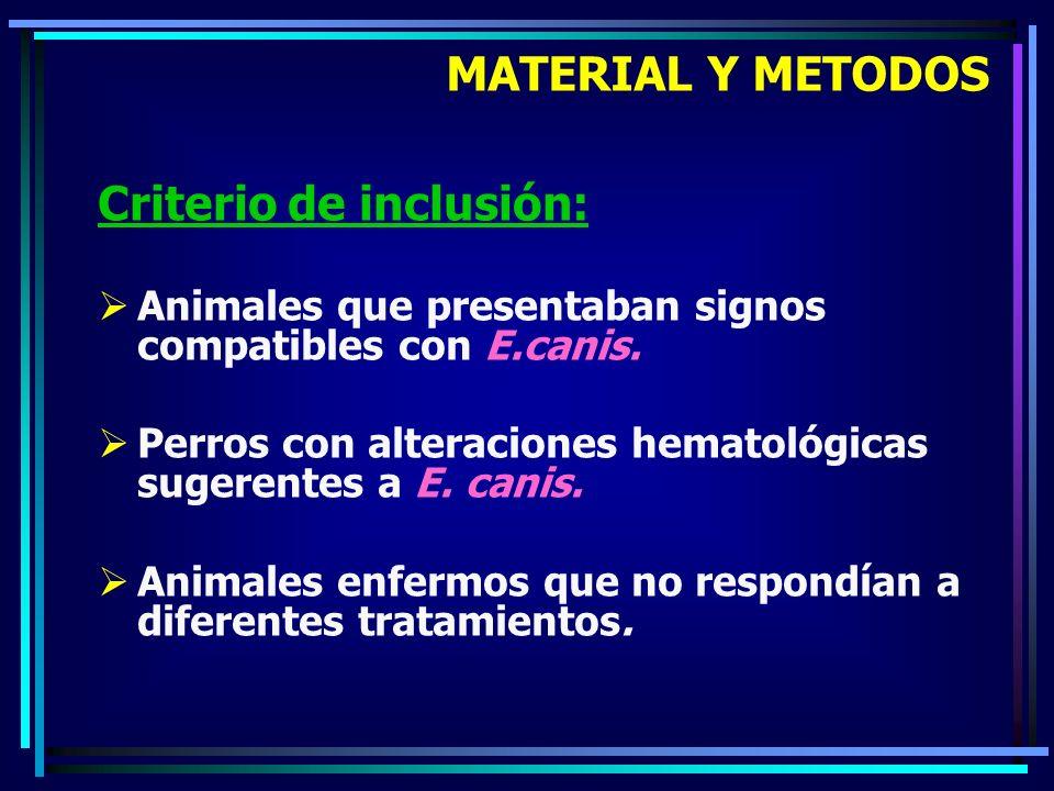 Criterio de inclusión: