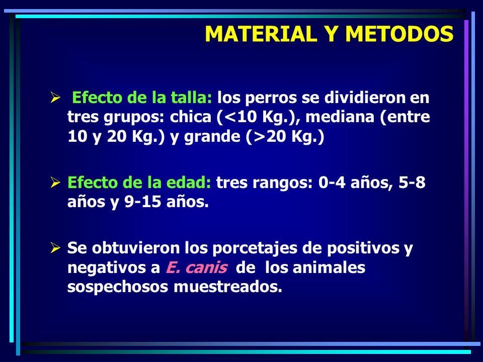 MATERIAL Y METODOS Efecto de la talla: los perros se dividieron en tres grupos: chica (<10 Kg.), mediana (entre 10 y 20 Kg.) y grande (>20 Kg.)