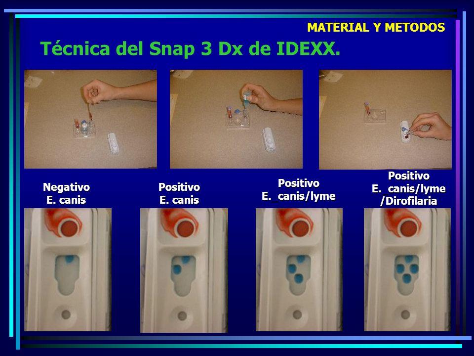 Técnica del Snap 3 Dx de IDEXX.