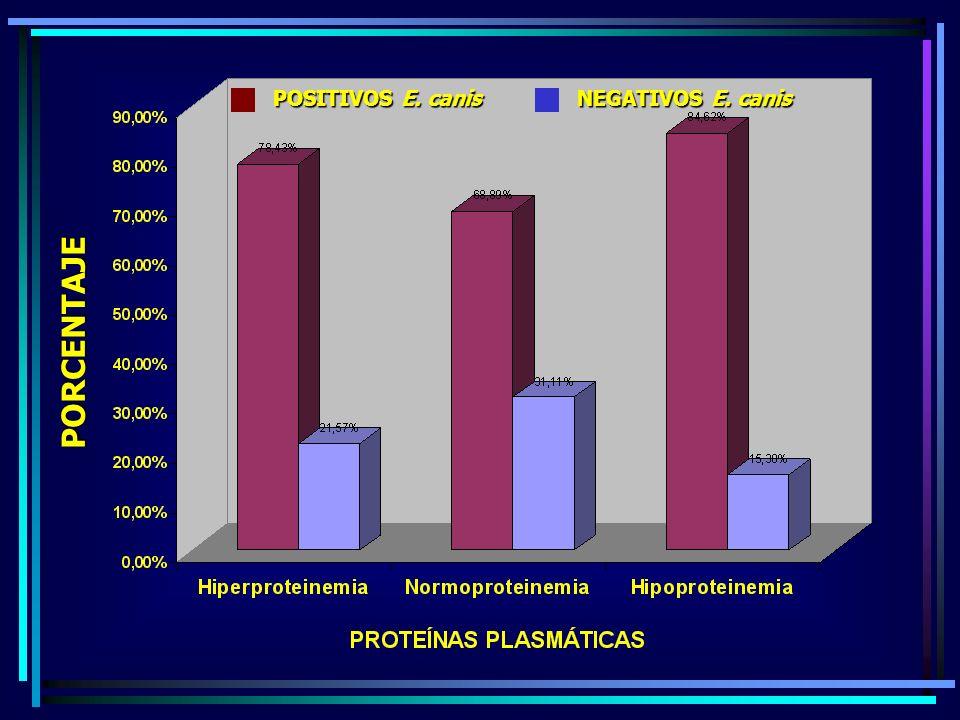 POSITIVOS E. canis NEGATIVOS E. canis PORCENTAJE