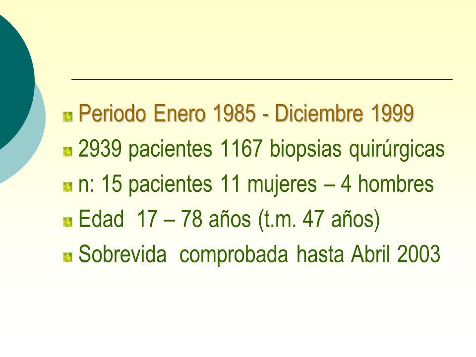 Periodo Enero 1985 - Diciembre 1999