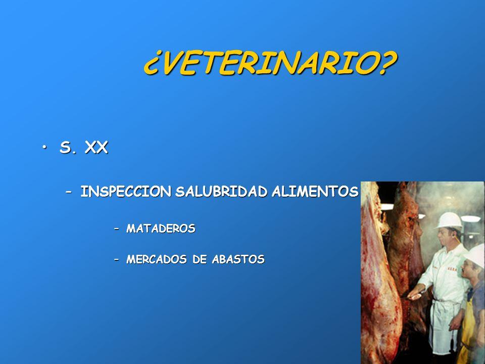 ¿VETERINARIO S. XX INSPECCION SALUBRIDAD ALIMENTOS MATADEROS
