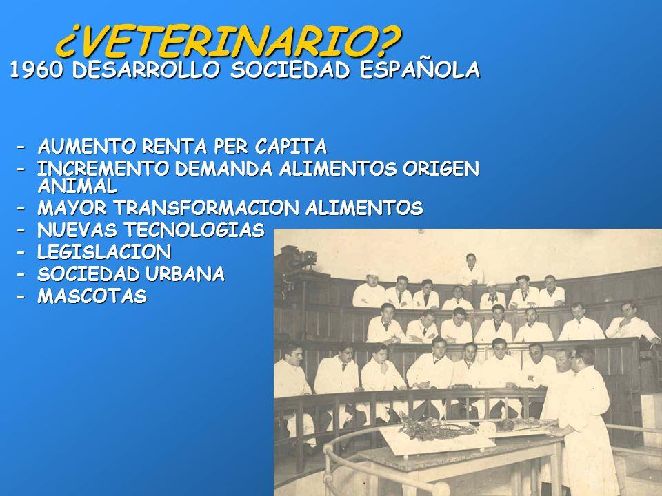 ¿VETERINARIO 1960 DESARROLLO SOCIEDAD ESPAÑOLA