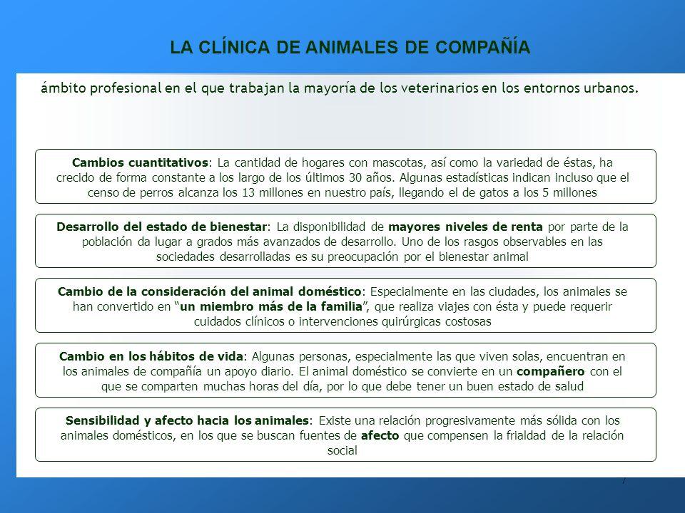 LA CLÍNICA DE ANIMALES DE COMPAÑÍA