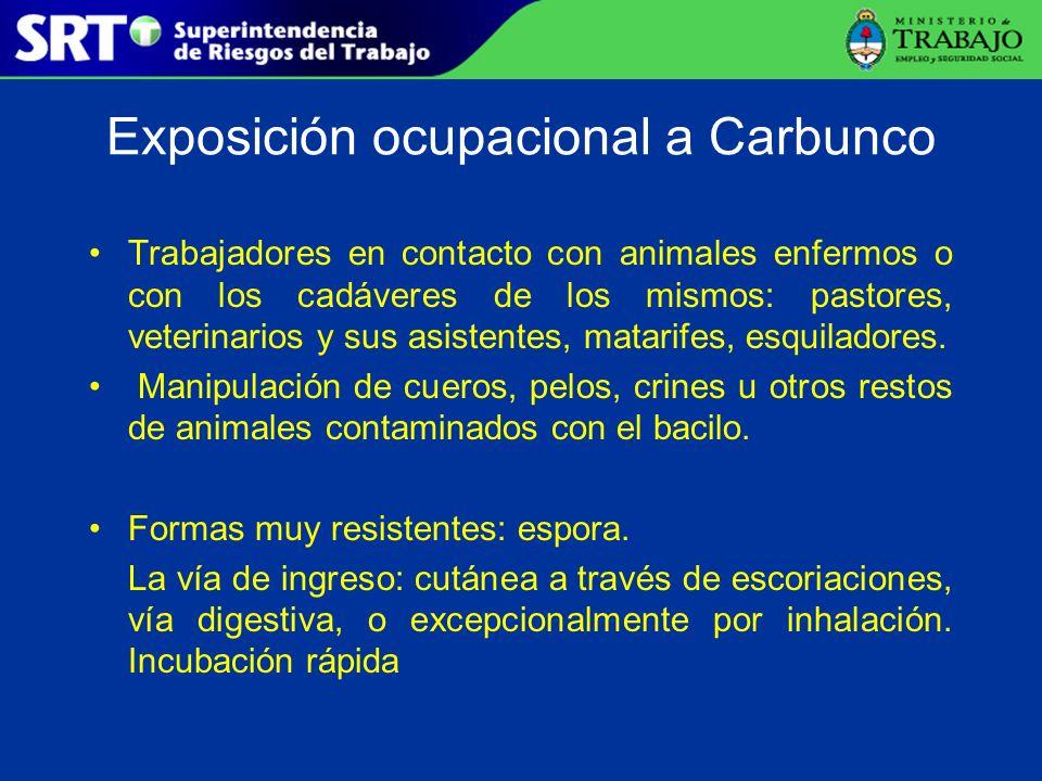 Exposición ocupacional a Carbunco