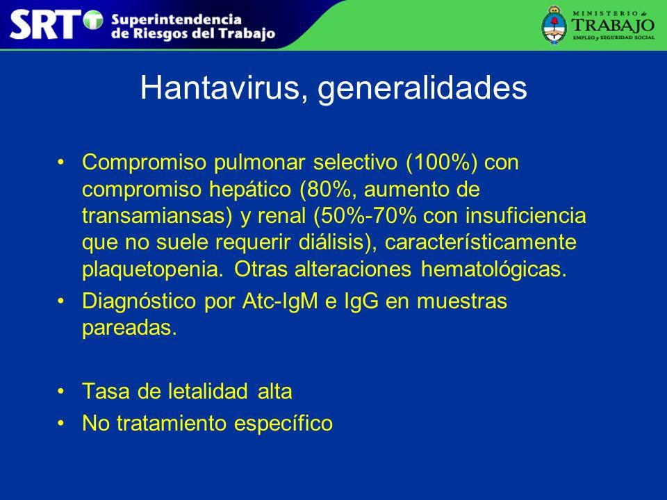 Hantavirus, generalidades
