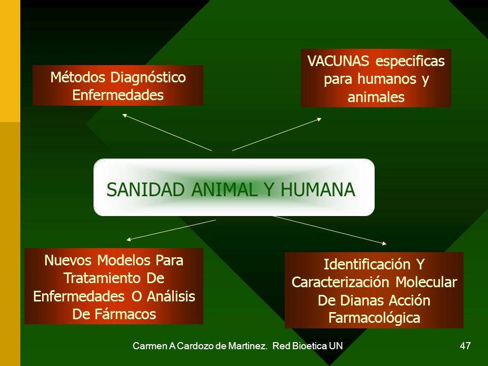 SANIDAD ANIMAL Y HUMANA