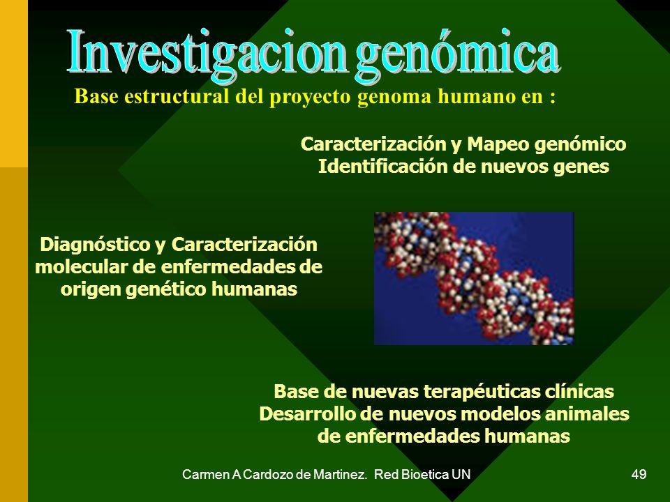 Base estructural del proyecto genoma humano en :