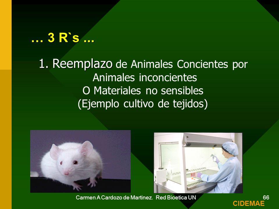 … 3 R`s ... Reemplazo de Animales Concientes por Animales inconcientes