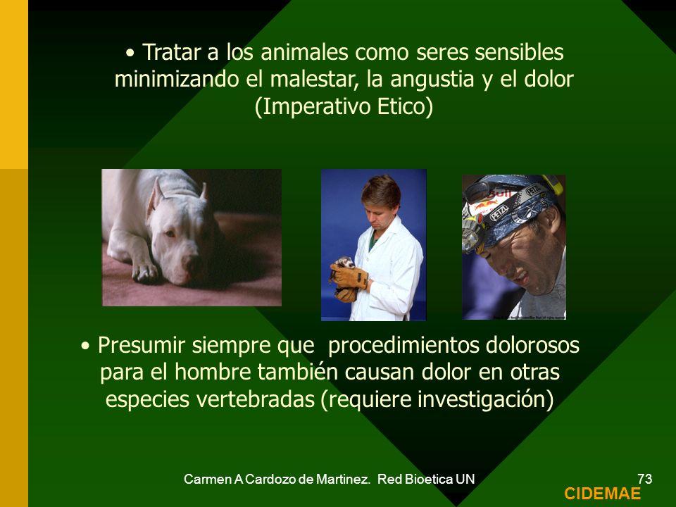 Tratar a los animales como seres sensibles