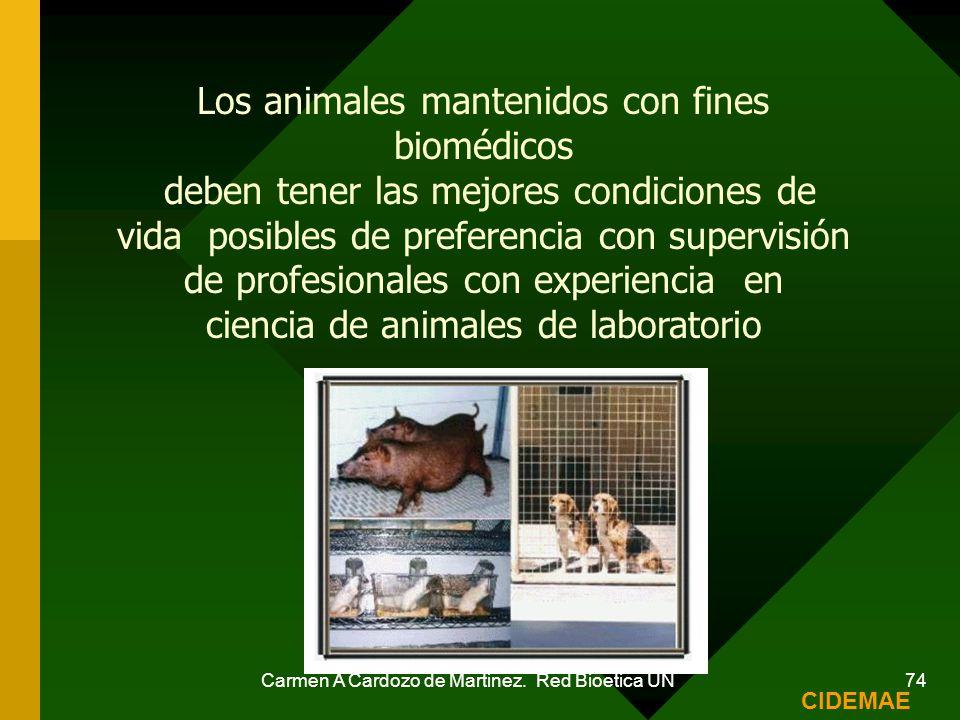 Los animales mantenidos con fines biomédicos
