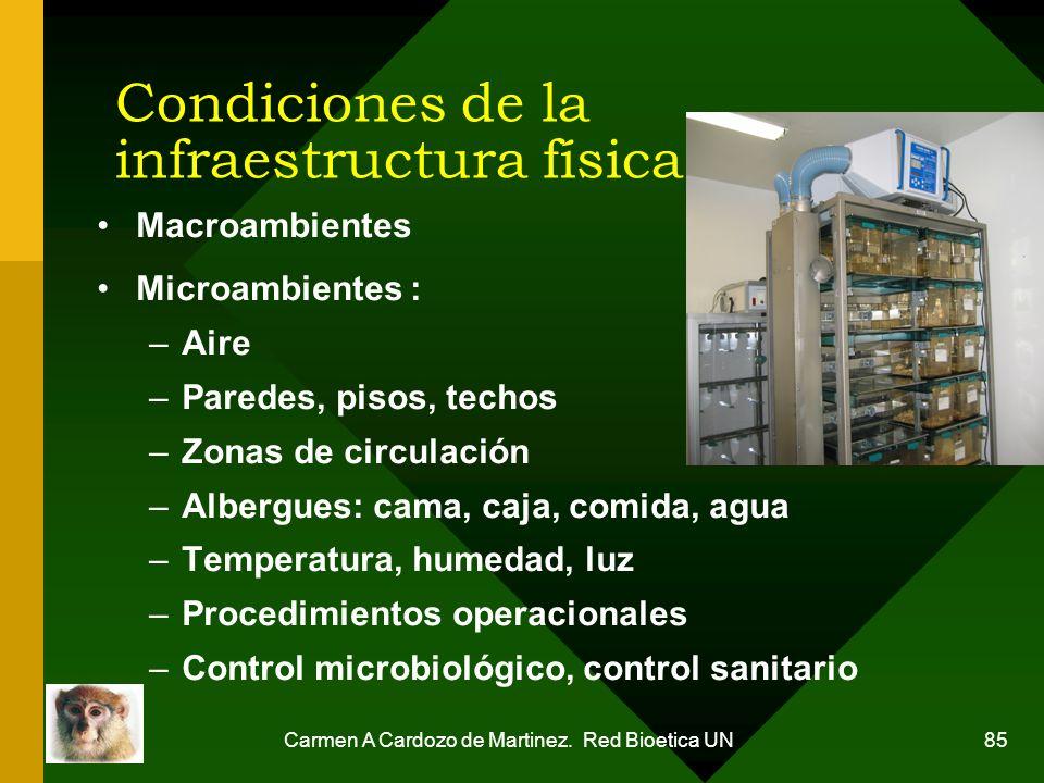 Condiciones de la infraestructura física
