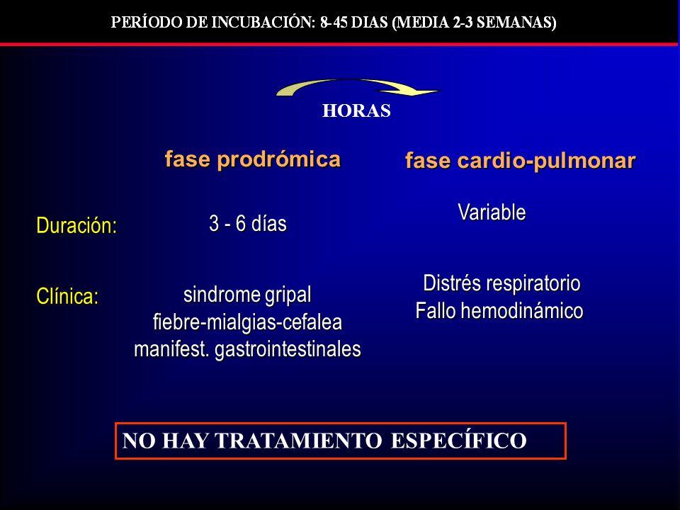 Distrés respiratorio Fallo hemodinámico fase cardio-pulmonar