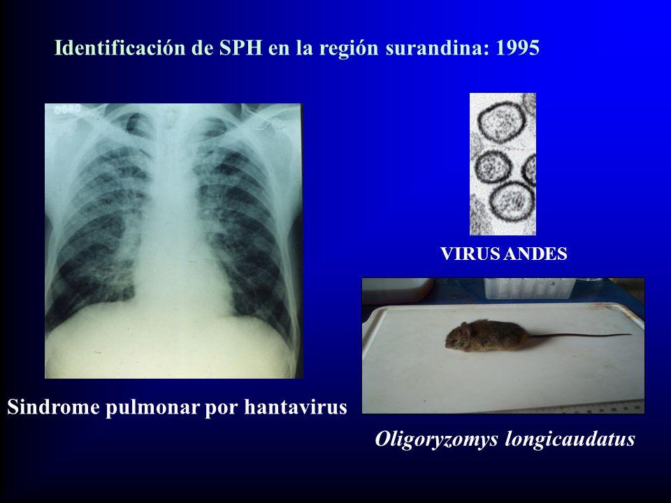 Identificación de SPH en la región surandina: 1995