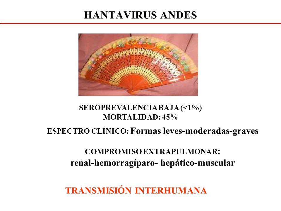 HANTAVIRUS ANDES renal-hemorragíparo- hepático-muscular