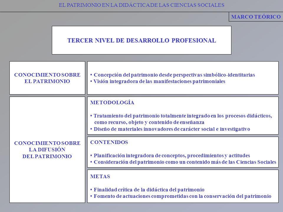 TERCER NIVEL DE DESARROLLO PROFESIONAL