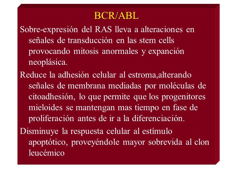 BCR/ABL
