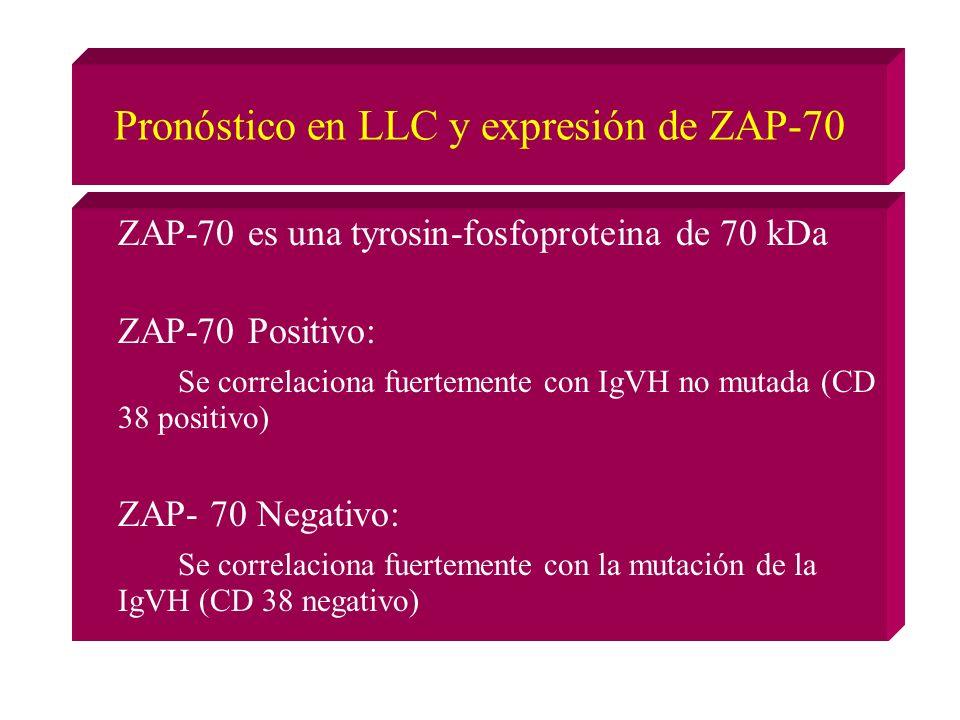 Pronóstico en LLC y expresión de ZAP-70