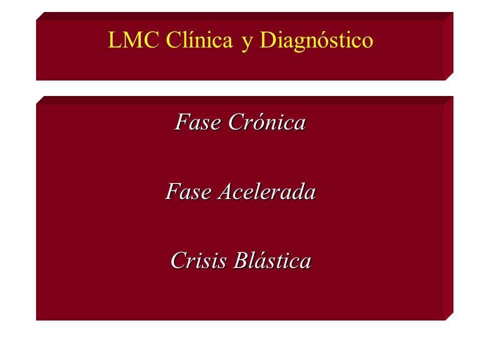 LMC Clínica y Diagnóstico