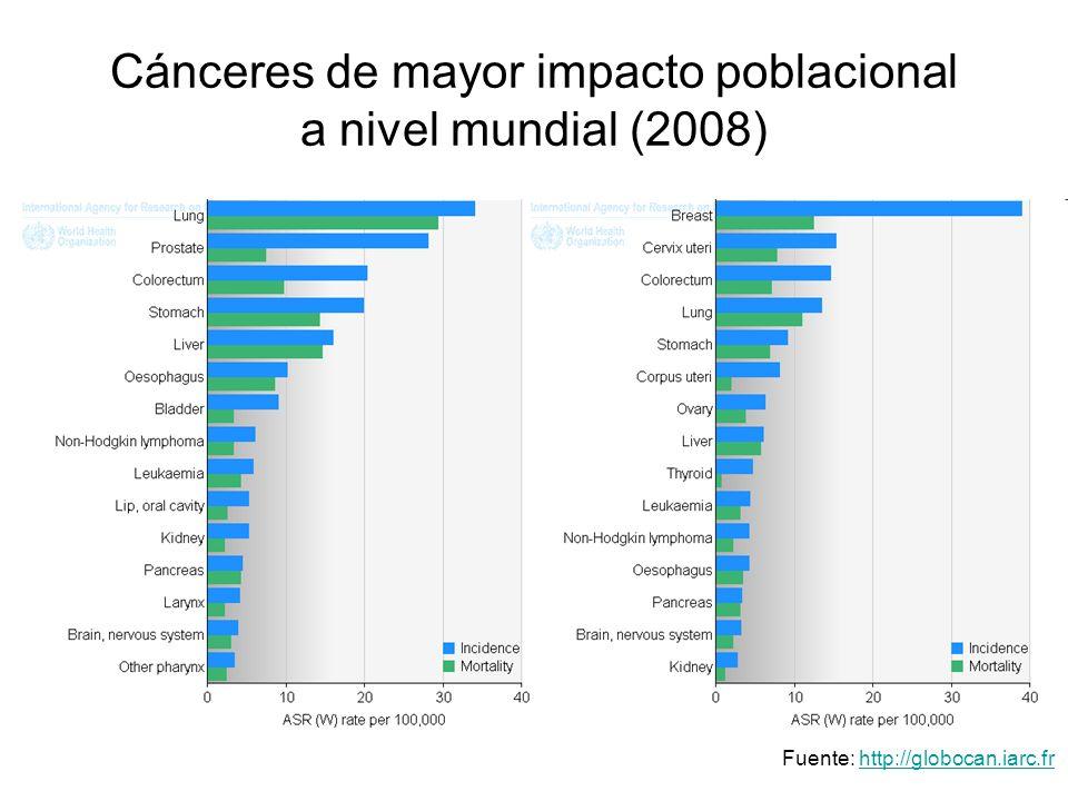 Cánceres de mayor impacto poblacional a nivel mundial (2008)
