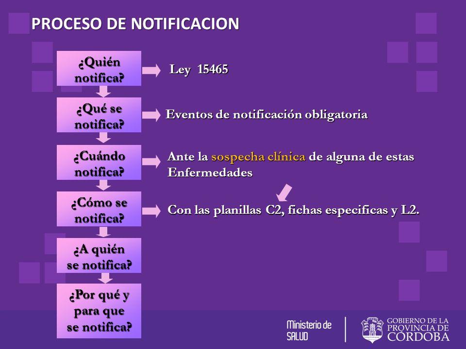 PROCESO DE NOTIFICACION