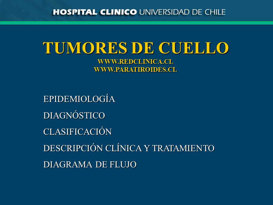 TUMORES DE CUELLO EPIDEMIOLOGÍA DIAGNÓSTICO CLASIFICACIÓN