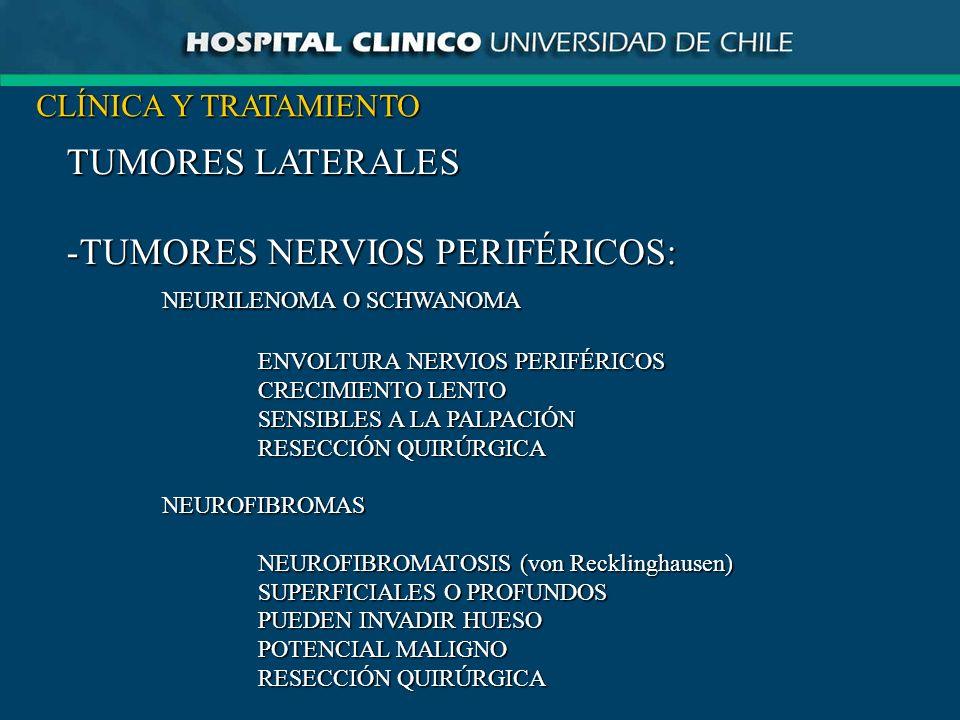 TUMORES NERVIOS PERIFÉRICOS: NEURILENOMA O SCHWANOMA