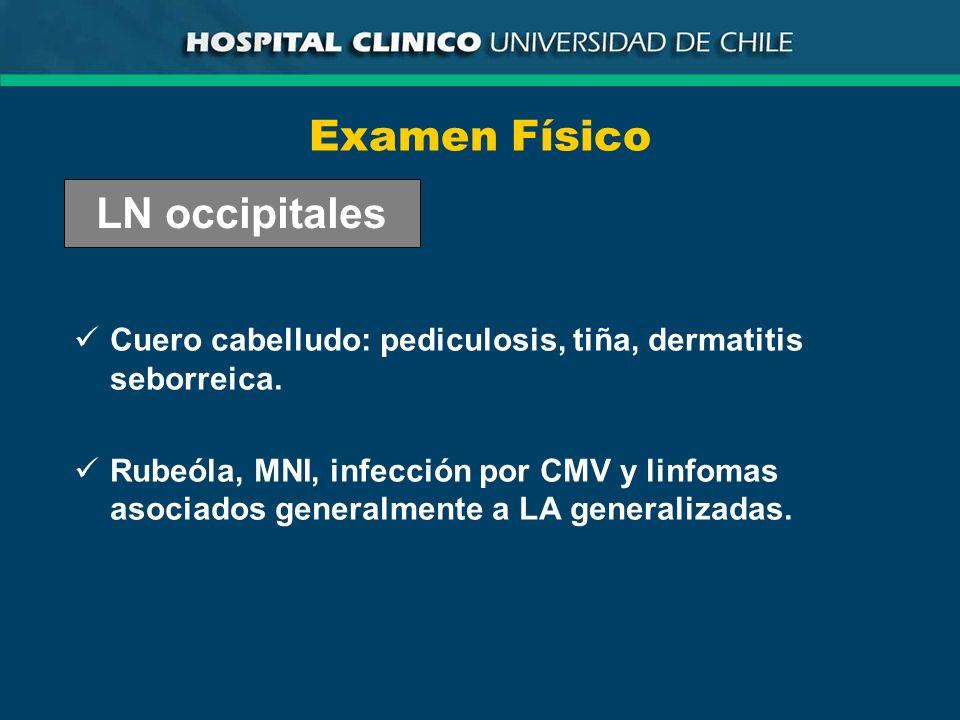 Examen Físico LN occipitales