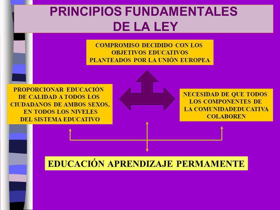 PRINCIPIOS FUNDAMENTALES DE LA LEY