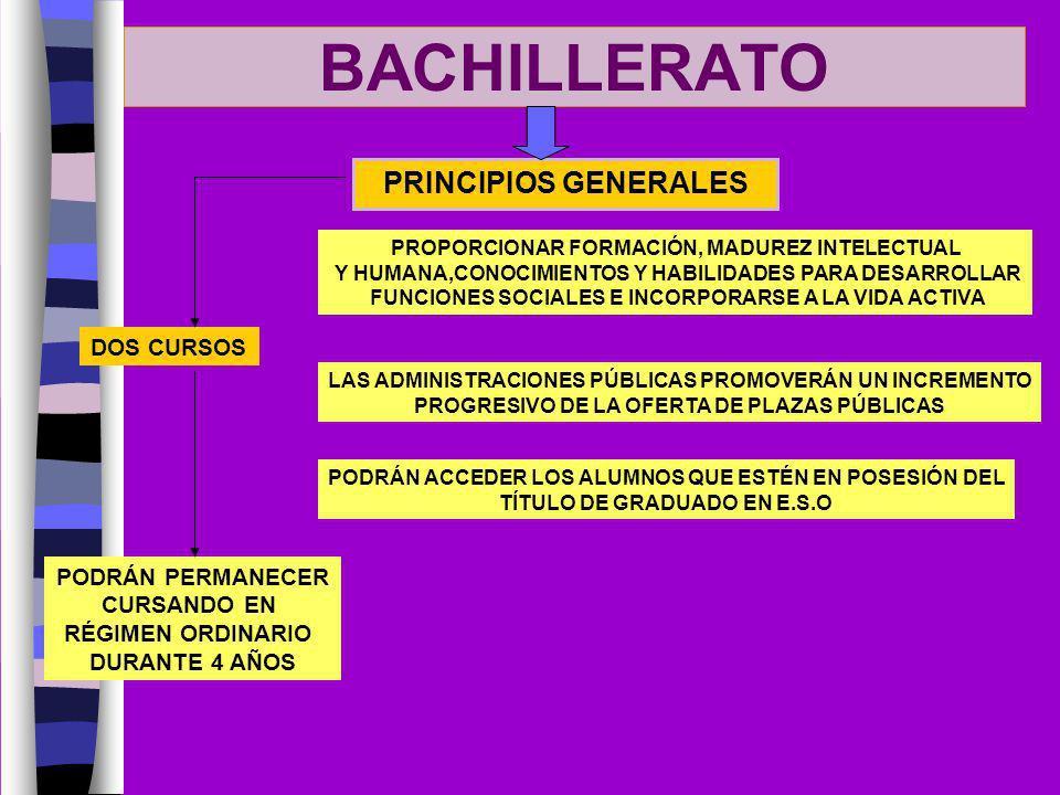 BACHILLERATO PRINCIPIOS GENERALES DOS CURSOS PODRÁN PERMANECER