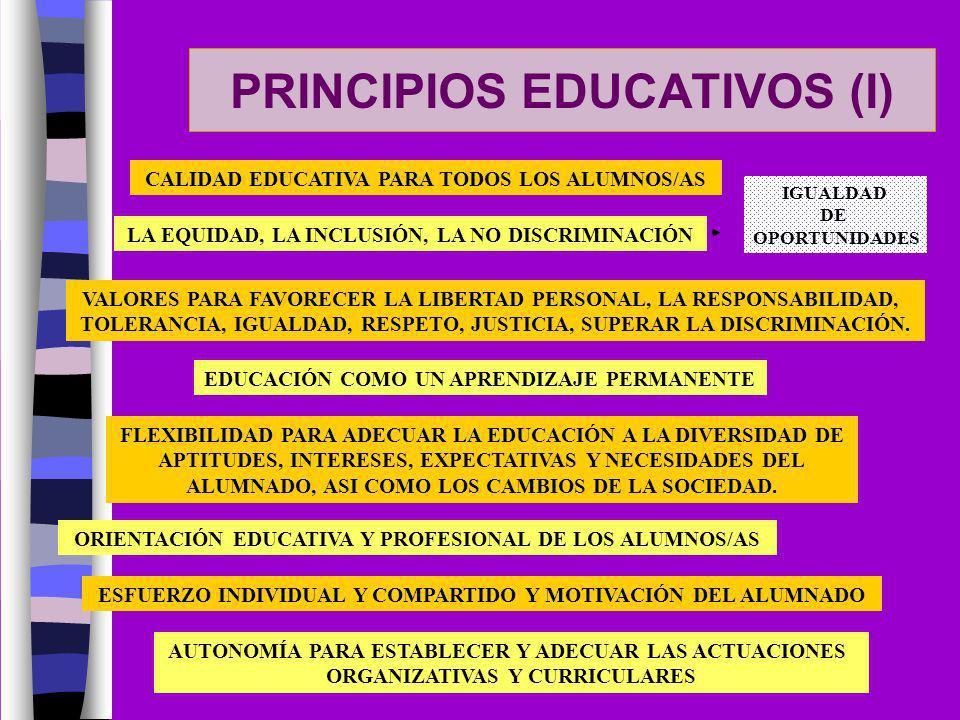 PRINCIPIOS EDUCATIVOS (I)