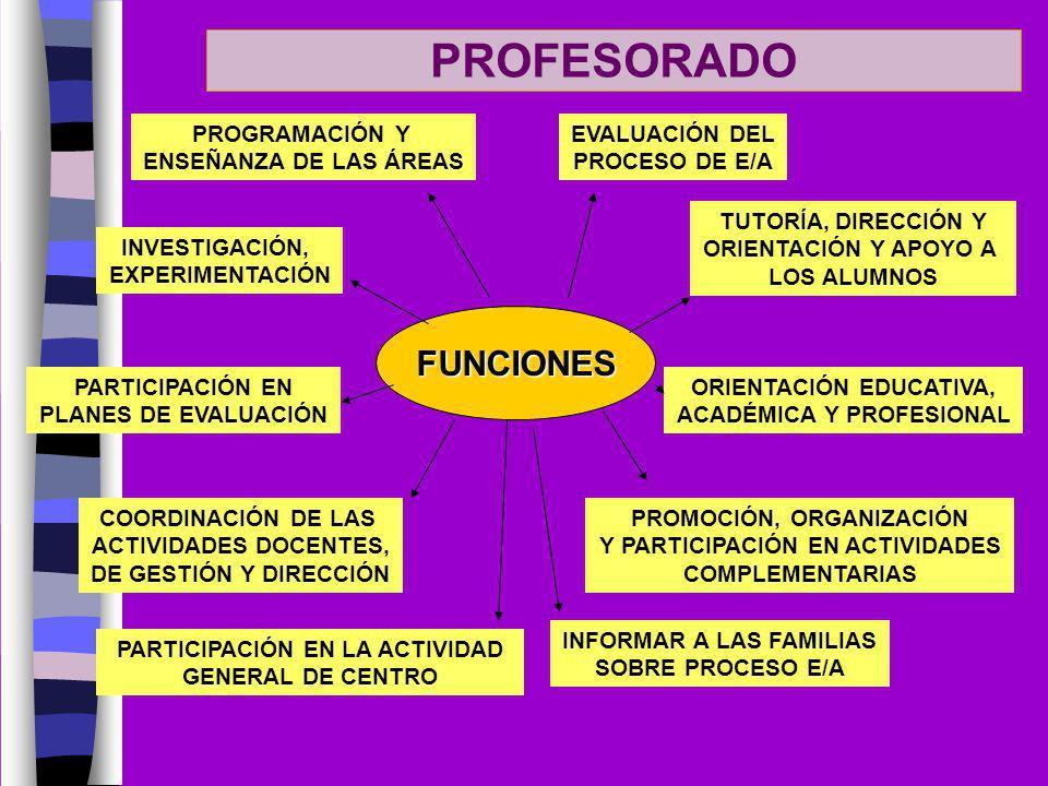 PROFESORADO FUNCIONES PROGRAMACIÓN Y ENSEÑANZA DE LAS ÁREAS