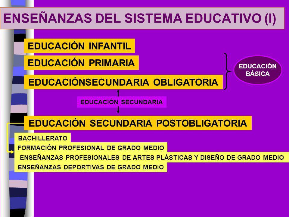 ENSEÑANZAS DEL SISTEMA EDUCATIVO (I)