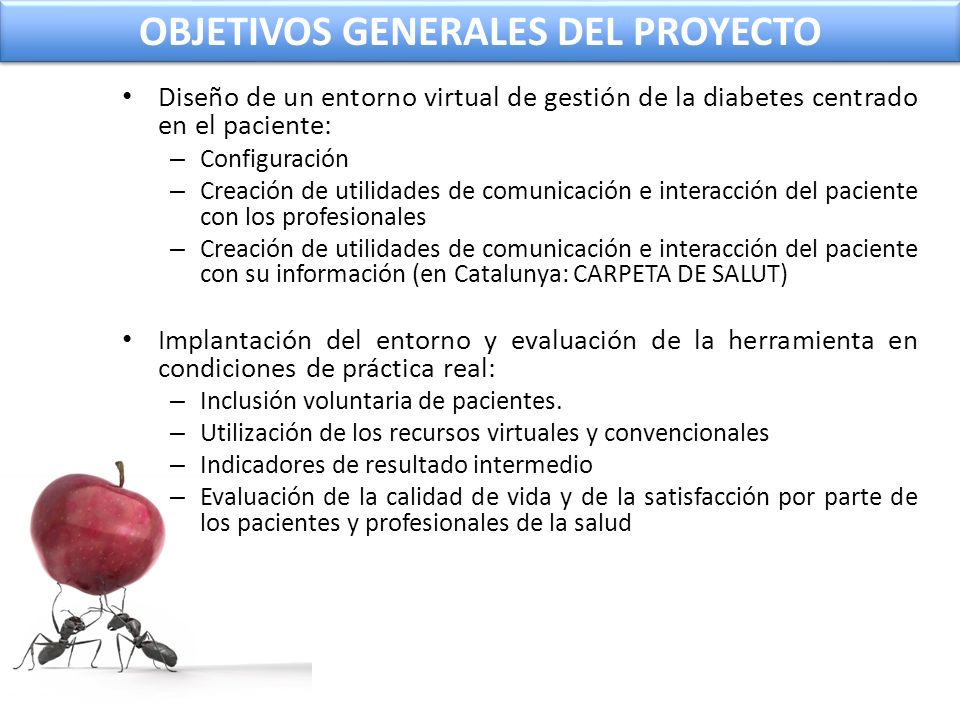OBJETIVOS GENERALES DEL PROYECTO