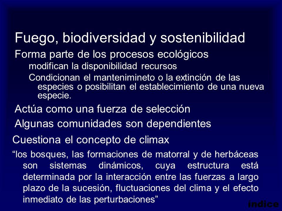 Fuego, biodiversidad y sostenibilidad